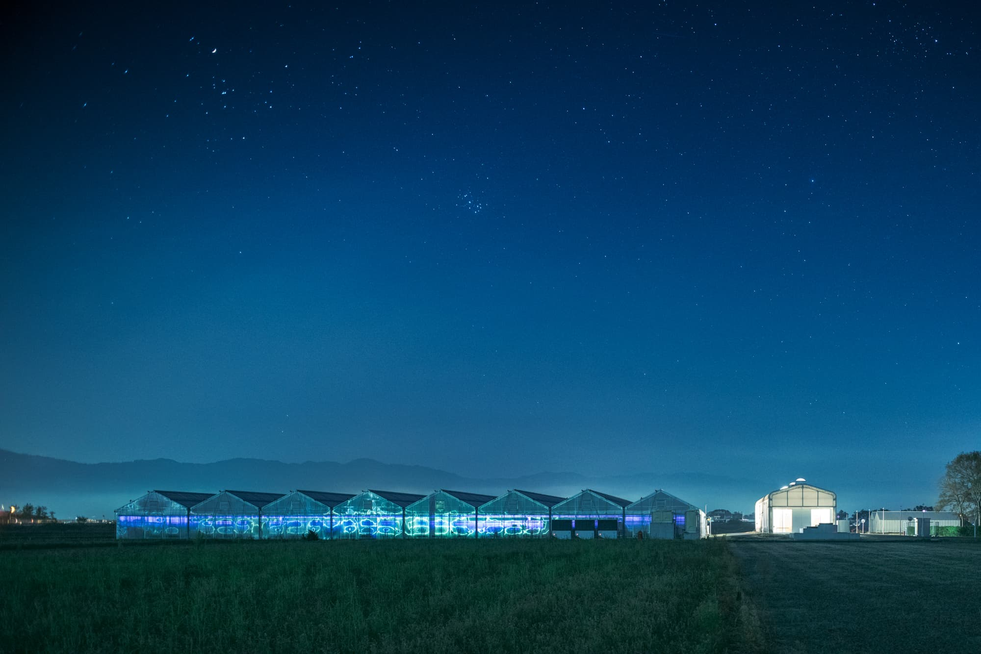 鈴鹿山系を仰ぎ、琵琶湖のほとりに建つローズファームケイジ