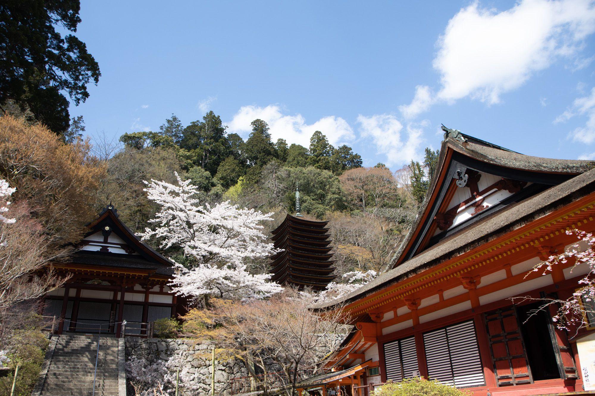 談山神社社殿。蹴鞠の庭から権殿(左)、十三重塔(中央)、神廟拝所(右)を見る。十三重塔は、世界最古の木造塔だという。