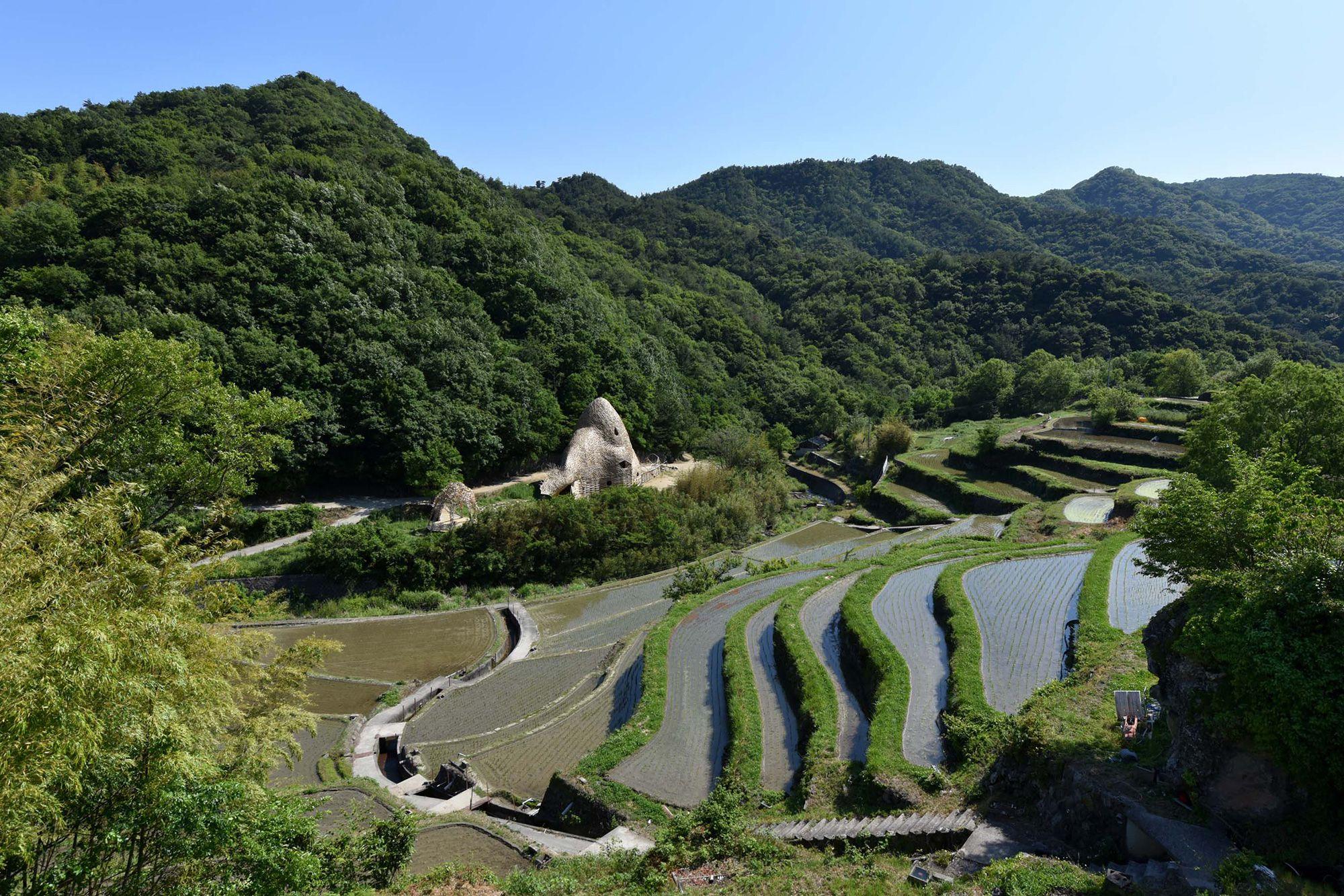日本の棚田百選にも選ばれている中山千枚田(なかやませんまいだ)。
