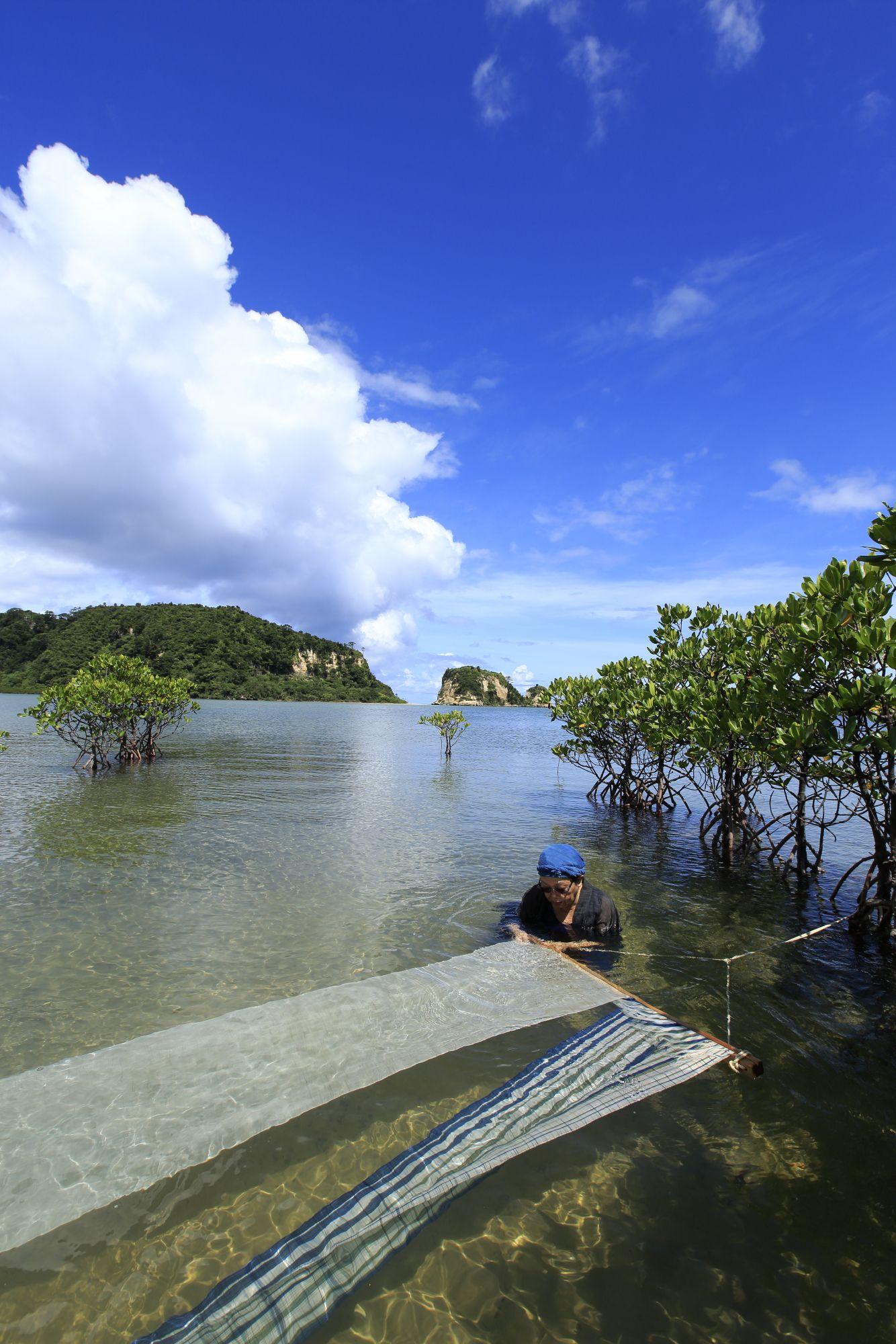西表島で海晒しをする石垣昭子。故郷の竹富島には「ヌヌシャー(布晒し)の浜」がある。Photography by Makoto Yokotsuka