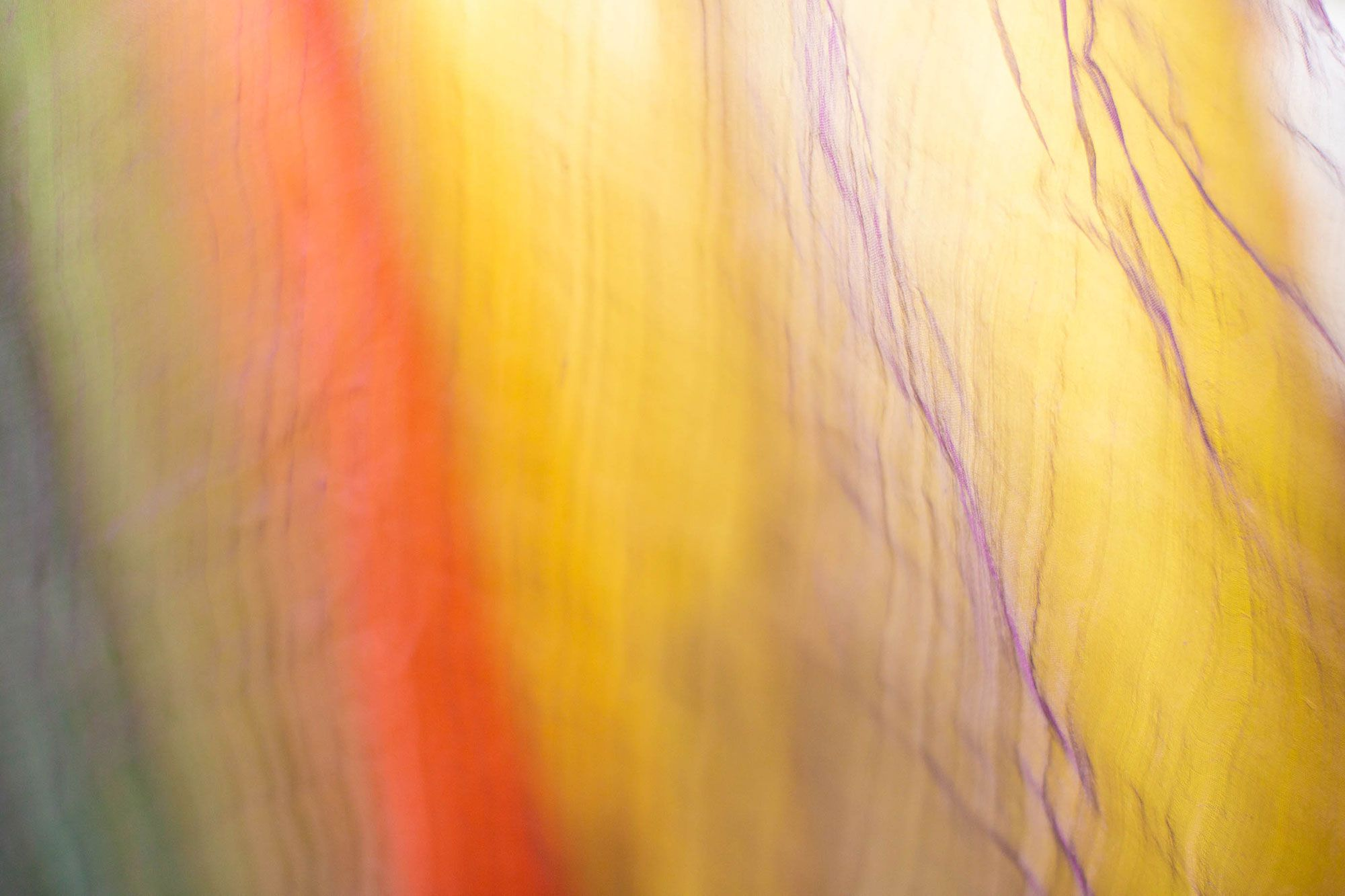 染司よしおかのストール。色とりどりのうすものが風になびく。