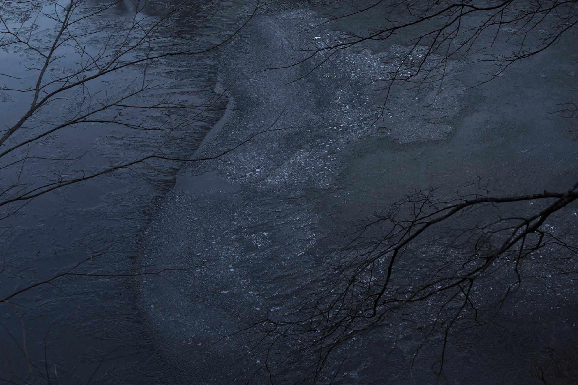 近くの池に氷が張ってきた。季節の気配には些細なことで気づく。